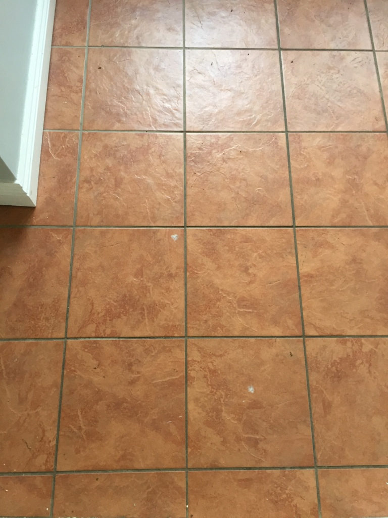 Porcelain Tiled Utility Floor Before Cleaning in Hull