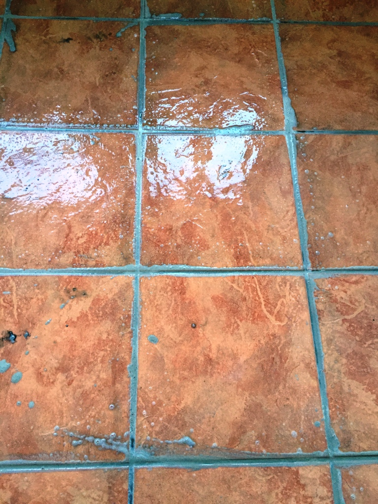 Porcelain Tiled Utility Floor During Grout Sealing in Hull